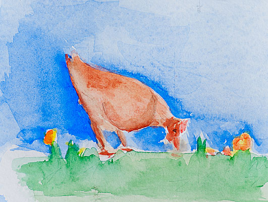 Aquarell Illustrationen: Huhn